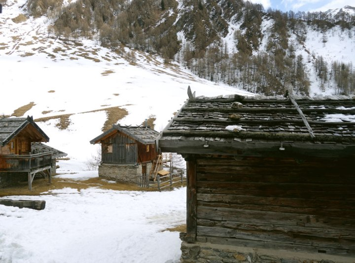 Südtirol_Fane2