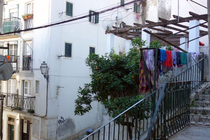 t&w_Lisbon6